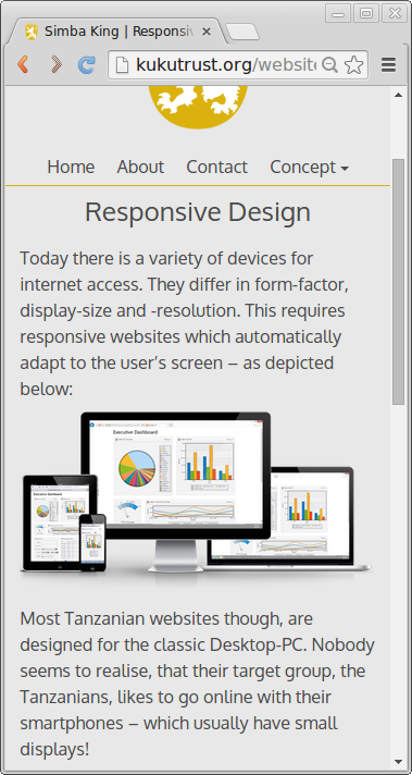 Screenshot-Simba-King-Responsive-Design-3
